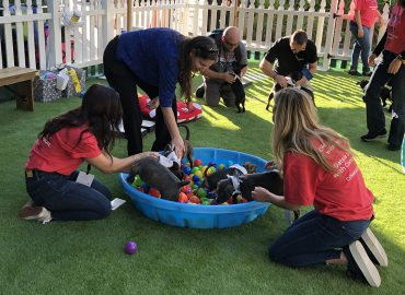 Commvault's Data Therapy Dog Park at VMworld 2019