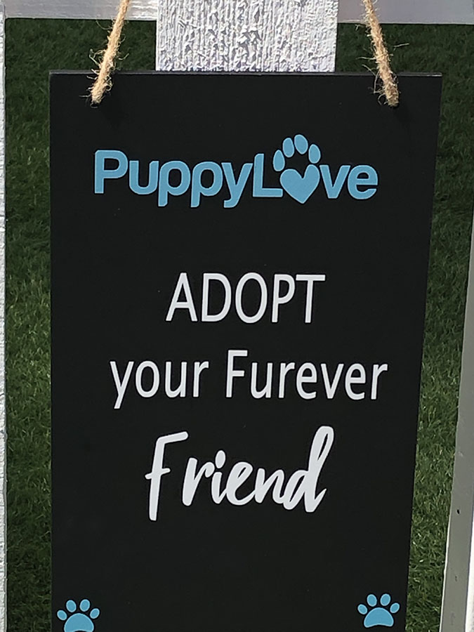 Puppy Adoption Signage at Commvault's Data Therapy Dog Park at VMworld 2019
